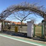 森の詩幼稚園